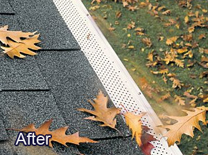 Leaf Guard after